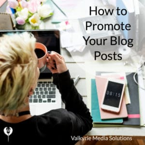 Promote blog posts Valkyrie Media Solutions Indianapolis Digital Marketing Agency